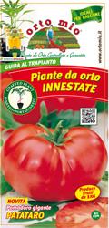 piante_da_orto_innestate_s2
